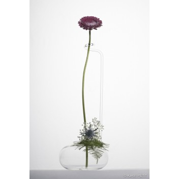 Vase Zarafa Vase Zarafa Wilfried Allyn Design Art Floral 90,00 €90,00 €